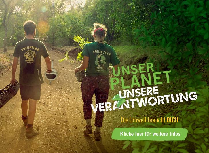 Naturschutz – Projekte mit Projects Abroad