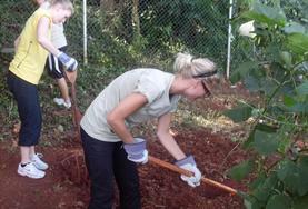 Freiwillige im Landwirtschaft - Projekt auf Jamaika helfen beim Anlegen eines neuen Beetes auf einem Biobauernhof der Kooperative.