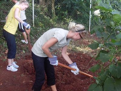 Farming Jamaika