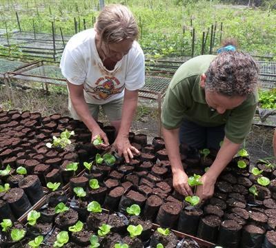 Freiwilligenarbeit für Freiwillige ab 50 Jahren in Ecuador