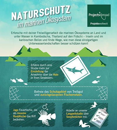Naturschutz im marinen Ökosystem