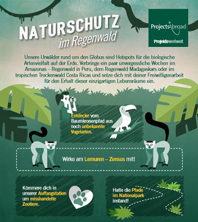 Naturschutz im Regenwald