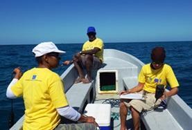 Ein Freiwilliger sammelt Daten auf einem Survey-Tauchgang im Naturschutz -Projekt in Belize.