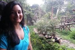 Im Tierschutz - Projekt in China kannst du im Rahmen eines Freiwilligendienstes Pandas pflegen.