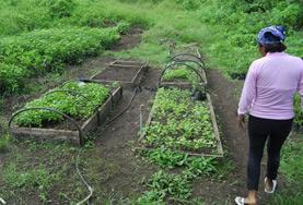 Naturschutz - Projekt im Ausland : Ecuador
