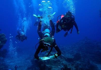 Eine Freiwillige auf den Fidschi – Inseln belegt den Divemaster - Kurs