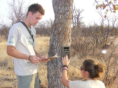 Naturschutz in Südafrika