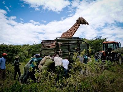 Natur - und Umweltschutz in Kenia