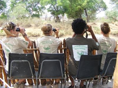 Eine Freiwillige von Projects Abroad im Naturschutz – Projekt in Südafrika