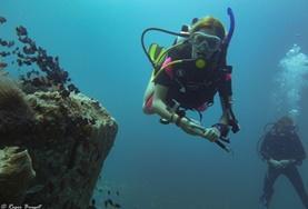 Eine Freiwillige im Schulferien - Special macht auf einer Tauchstudie in den Gewässern vor Koh Sdach unter Wasser Notizen.