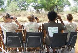 Schüler/innen im Schulferien - Special Naturschutz beobachten eine Elefantenherde im Wild at Tuli - Reservat und sammeln ihre Beobachtungen für eine Wildtierstudie.