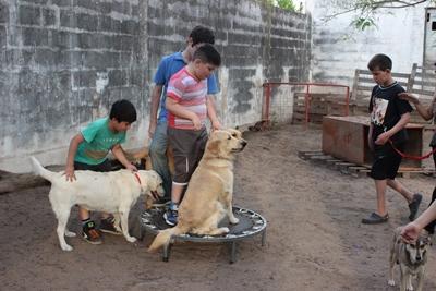 Argentinien Hundetherapie