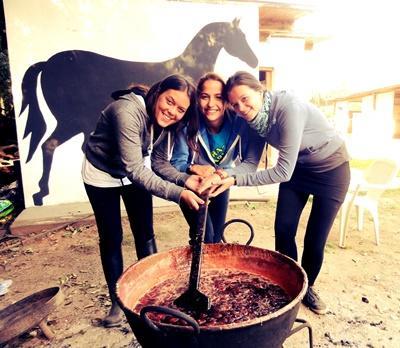 Pferdetherapie Argentinien