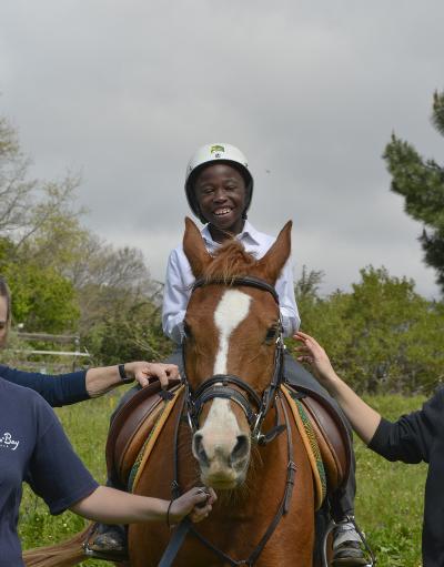 Projects Abroad Pferdetherapie - Projekt in Südafrika