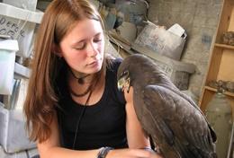 Eine Freiwillige aus der Schweiz trainiert einen Falken mit Flugübungen im Falknerei - Projekt in Mexiko.
