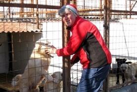 Eine Freiwillige kümmert sich zusammen mit einer Mitarbeiterin des Tierheims um zwei Welpen.