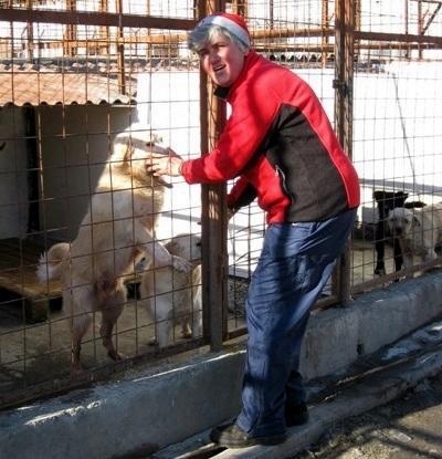 Freiwilligendienst im Tierheim
