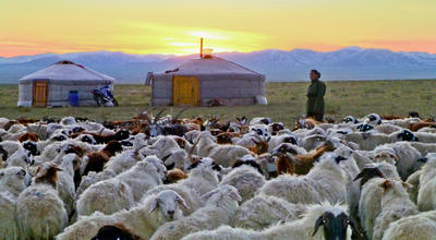 Community Work im Nomaden – Projekt