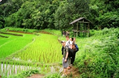 Ausflug ins Immergrüne in Thailand