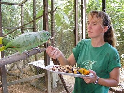 Eine Freiwillige bei der Vogelfütterung