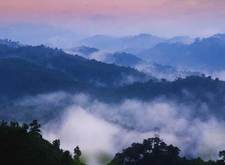 Wunderschöne Natur im Zielland Bangladesch