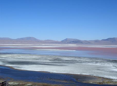 Freiwilligendienste und Auslandspraktika Bolivien