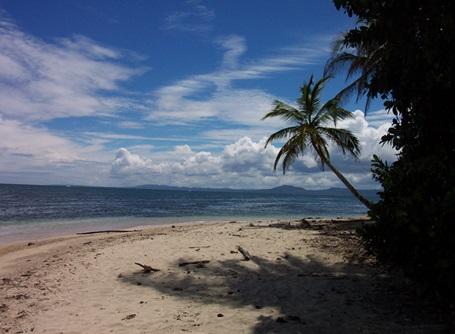 Freiwilligendienste und Auslandspraktika Costa Rica