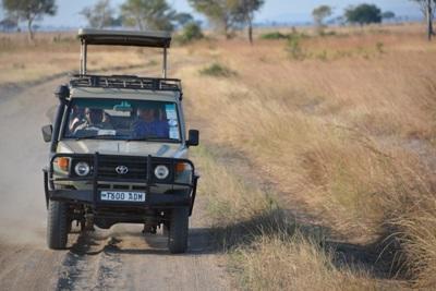 Freiwilligendienst in Kenia