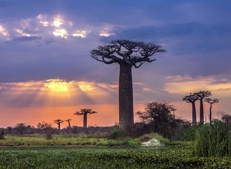 Ein wunderschöner Sonnenuntergang in Madagaskar