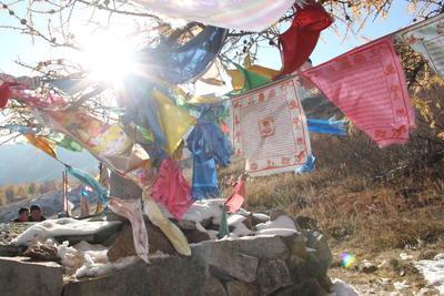 Freiwilligenarbeit und Hilfsprojekte in der Mongolei