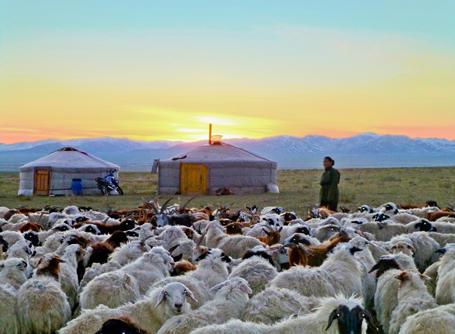 Freiwilligenarbeit & Hilfsprojekte in der Mongolei