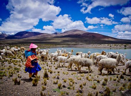 Freiwilligendienste und Auslandspraktika Peru