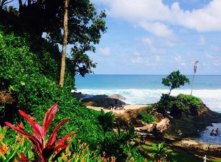Landschaft in unserem Projektland Samoa