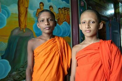 Freiwilligendienst in Sri Lanka